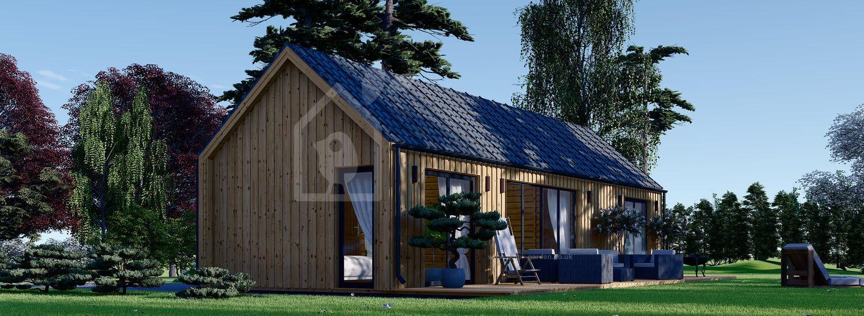 Residential Log Cabin ADA (Insulated, BRF, 44 mm + Cladding), 50 m² visualization 1
