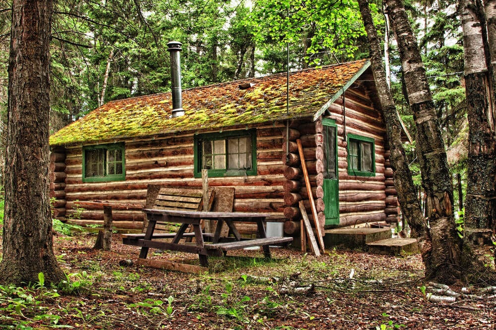 log-cabin-nature