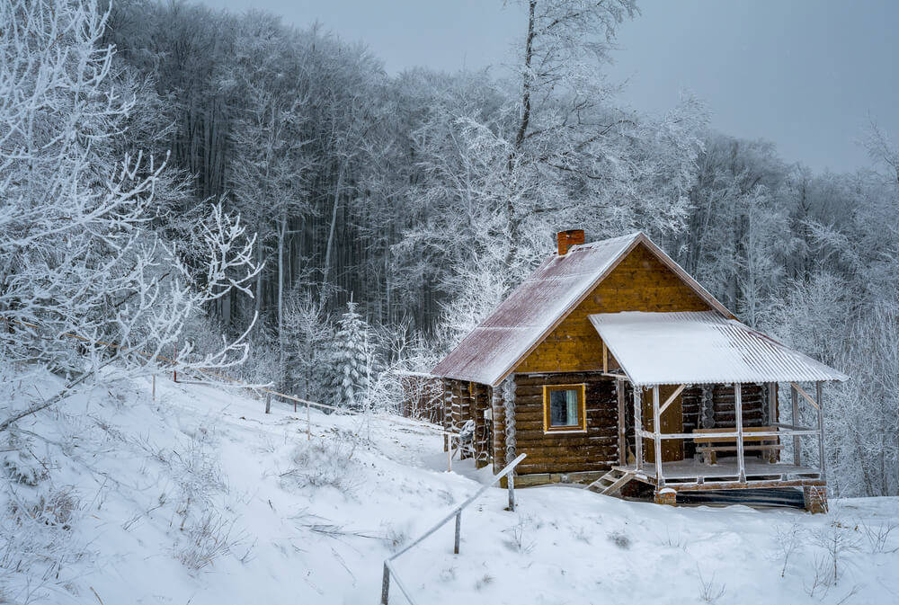 main-materials-for-a-log-cabin02155